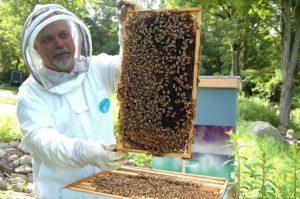 養蜂家の男性