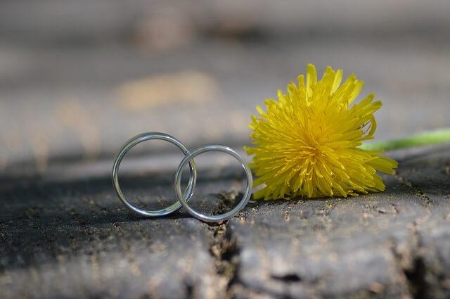 銀の2本の指輪