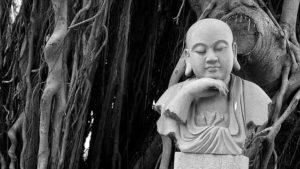 ガジュマルの木と仏